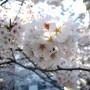 春休みスタート