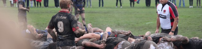 StBedesRugby