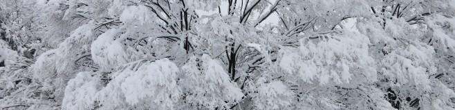 WinterInJapan