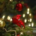 クリスマスツリーは音を鳴らして