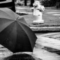 傘を忘れないようには必要か?