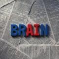 長期記憶の英語脳